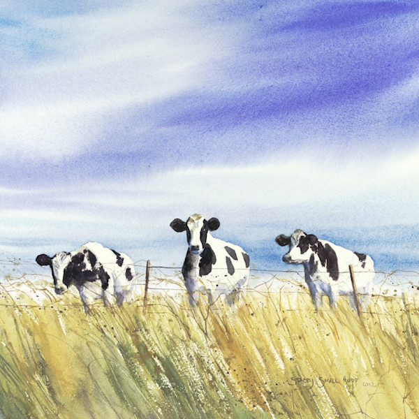 Curious Cows fine art print by Stacey Small Rupp.
