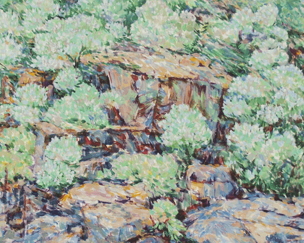 Buckeye In Bloom Art | Joy Collier's California Landscape Art