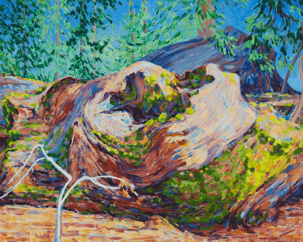 Mossy Fallen Giant Art | Joy Collier's California Landscape Art