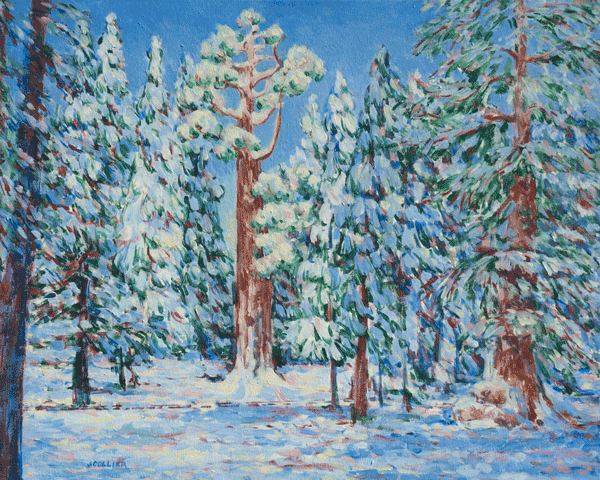 General Grant Grove In Snow Art | Joy Collier's California Landscape Art