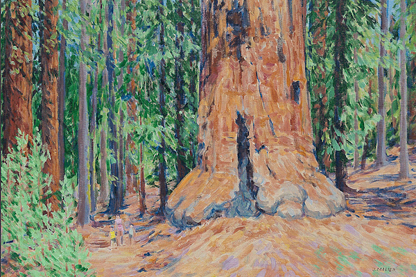 A Walk Among Giants Art | Joy Collier's California Landscape Art