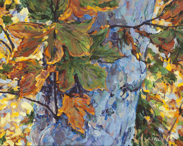 Fall Sycamore Art by Joy Collier's California Landscape Art