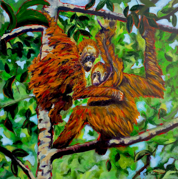 Hanging Orangutans in a Tropical Tree | Fine Art Painting Print by Rick Osborn