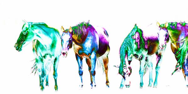 Gems-of-the-herd,