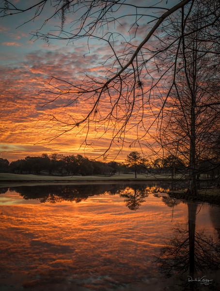 Orange Reflections of Perfection Photographic Art