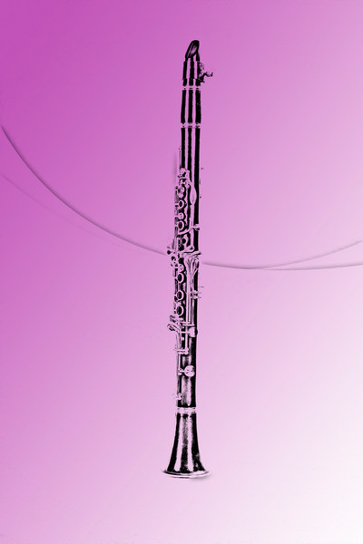 Clarinet Fine Art Drawing 9001.605