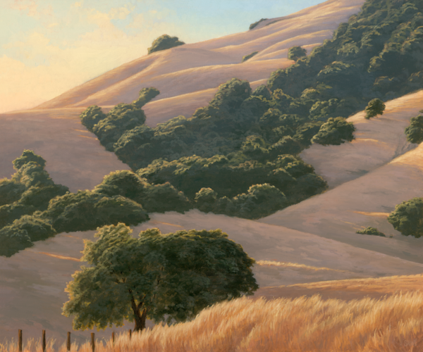 Golden Hills and Oaks