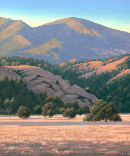 Late Light, Alexander Valley Art | Terry Sauve Fine Art