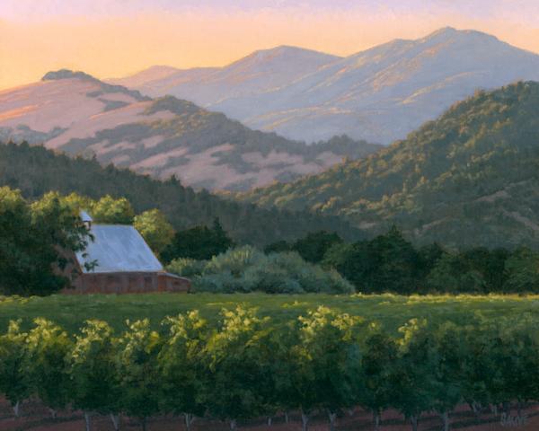 Last Light On The Vineyard Art | Terry Sauve Fine Art