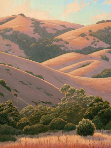 Summers Golden Hills Art | Terry Sauve Fine Art