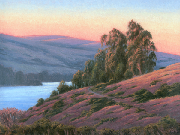 Sunset Glow, Tomales Bay Art | Terry Sauve Fine Art