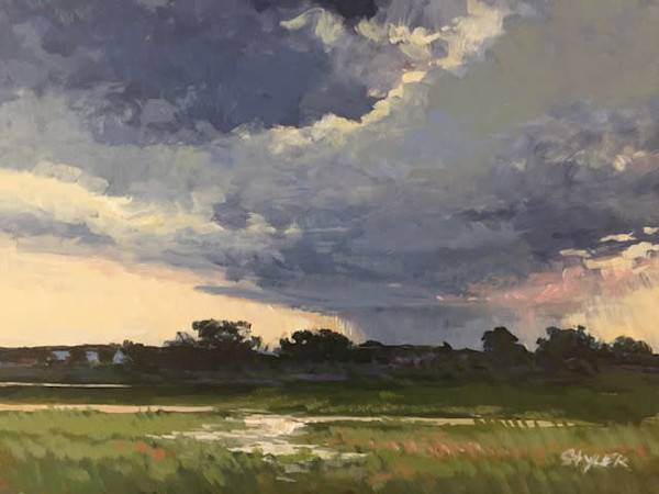Thunderhead In The Marsh