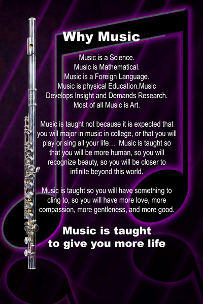 Flute Poster Why Music 8001.701