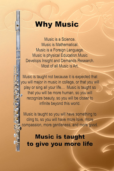 Why Music Flute Poster 8001.706