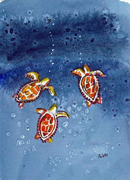 Turtles & Fish