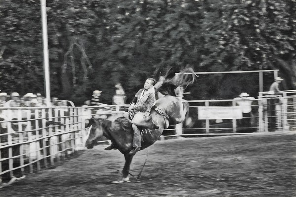 Friday Night Rodeo DSC 3338 charcoal III