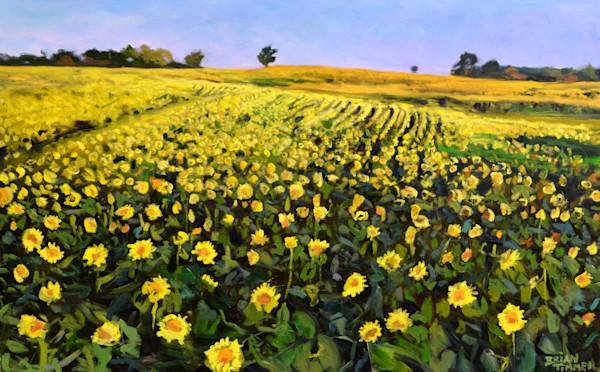 Septembers Glow oil painting