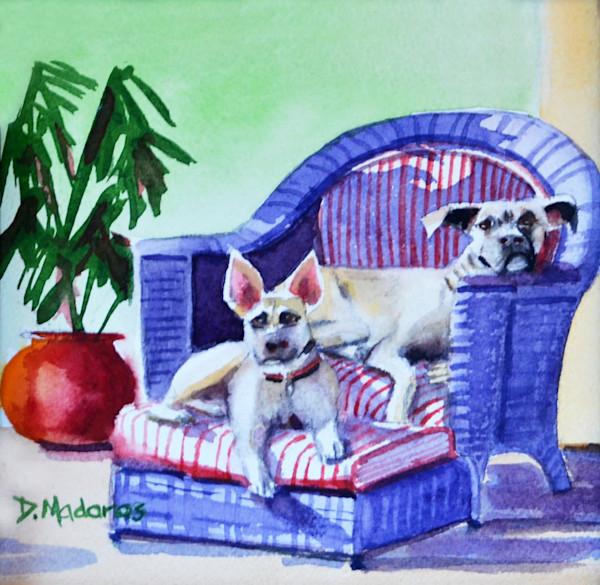 Tango & Stella | Southwest Art Gallery Tucson | Madaras