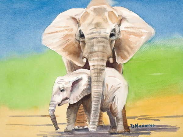 Animal Scenes | Print & Canvas Store | Madaras Gallery