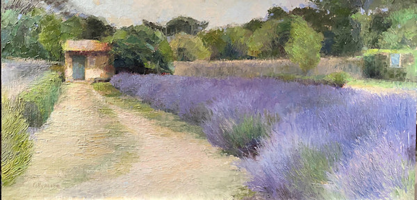 Van Gogh's Hospital Garden with Lavender, St. Remy, Provence