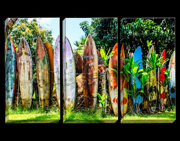 Surfboard Fence Triptych