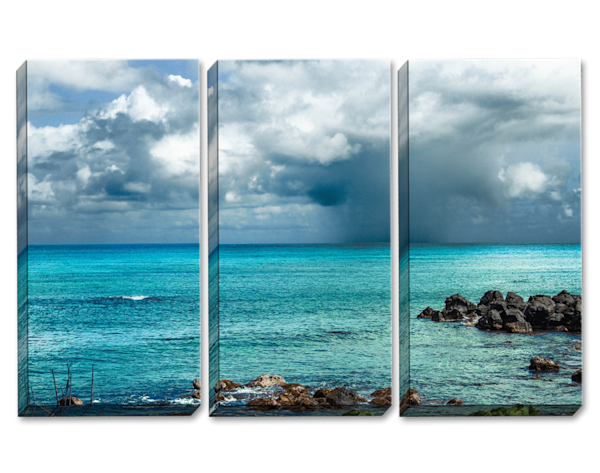 Dark Paradise Triptych