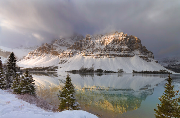 Golden hour  Bow Lake. Canadian Rockies|Banff National Park|Rocky Mountains|