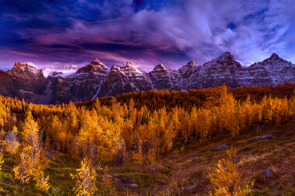 Larch Valley Banff National Park.Rocky Mountains|Canadian Rockies|