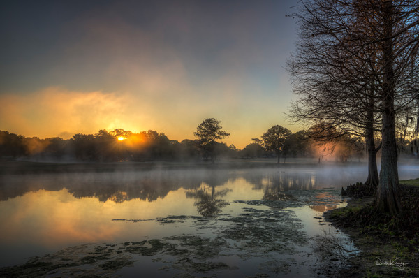 The Fogs of the Morning Light Photographic Art