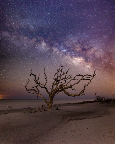 Driftwood Beach at Night