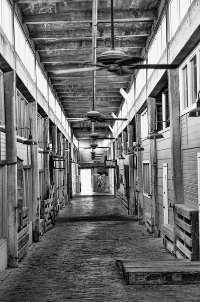 Cattle Stalls in The Stockyards, BW