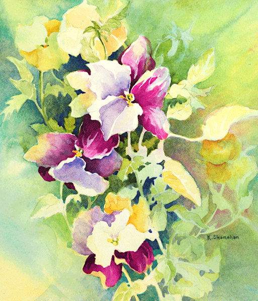 Pansies fine art print by Karen Shanahan.