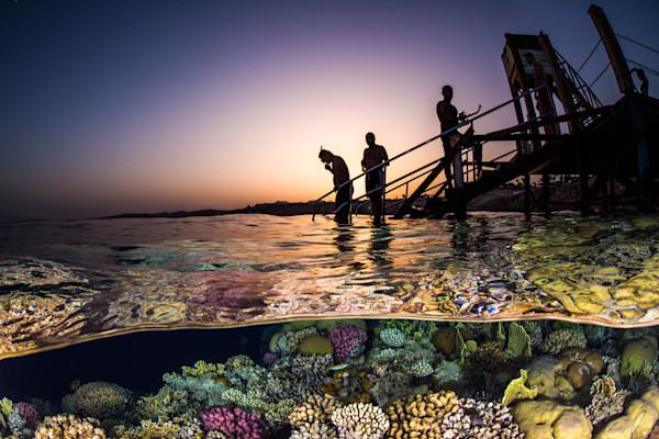 Sunset Snorkel