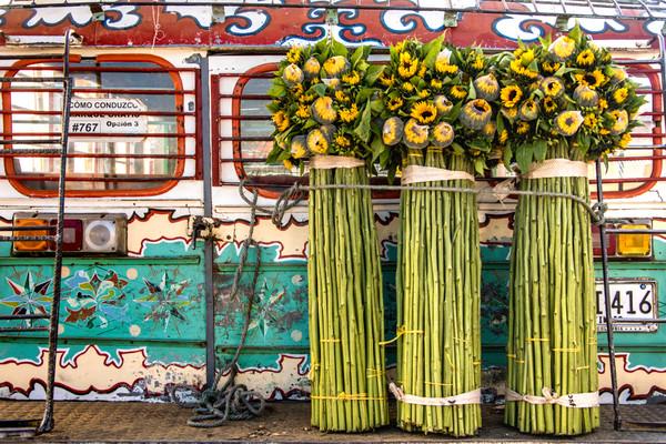 Sun flowers on back of chiva