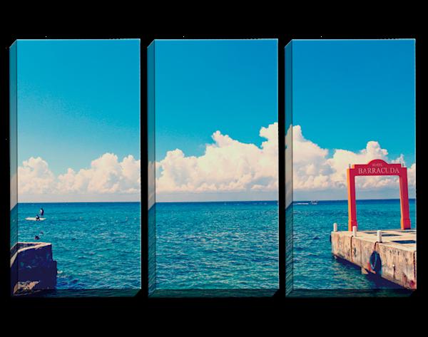 Baracuda Triptych