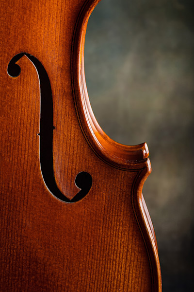 Antifque Violin Sound Hole Art Print 1004