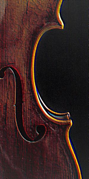 Wall Art Violin Embossed 4004