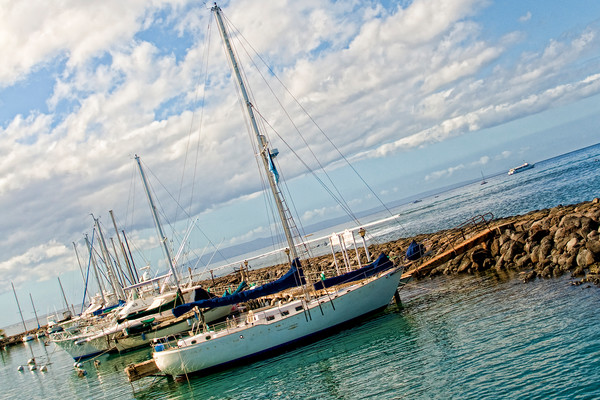 Sailboats Docked in Maui