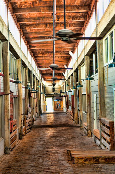 The Cattle Stalls of the Stockyards