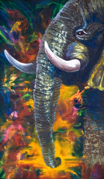 Elephant Art | KD Neeley