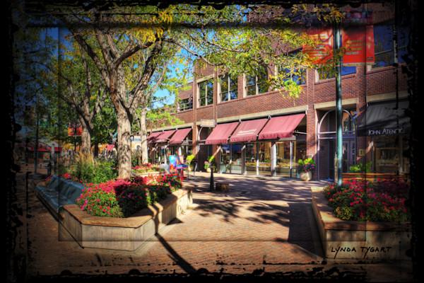 Tygart Fort Collins 5