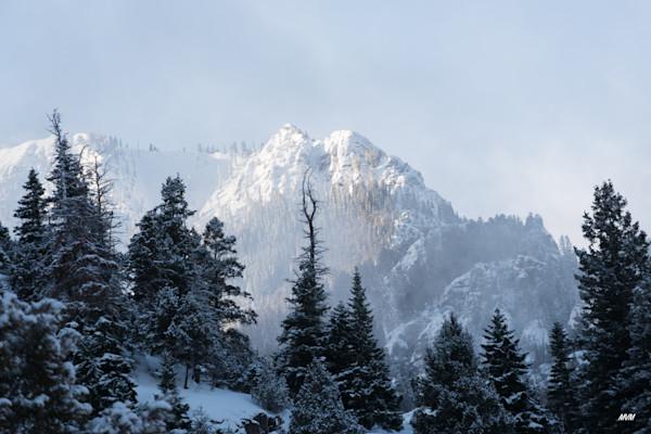 Markus Van Meter Photography | Winter Mornings