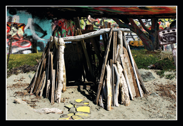 Gimme Shelter Photograph for Sale as Fine Art