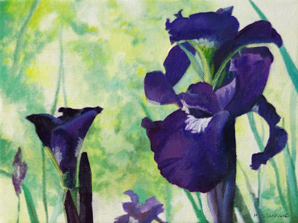 Purple Bearded Iris Painting by Mark Granlund