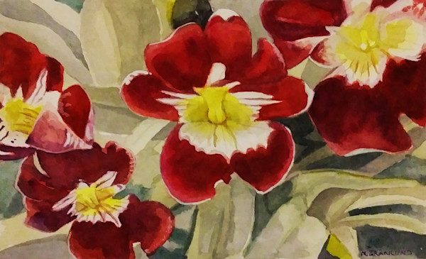 Miltonia Orchid Painting by Mark Granlund