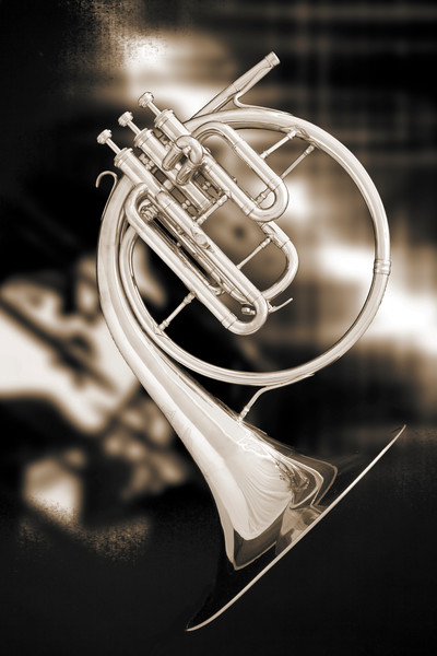 Antique French Horn Canvas Print 2080.21