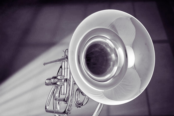 Marching French Horn Classic Picture 2080.31