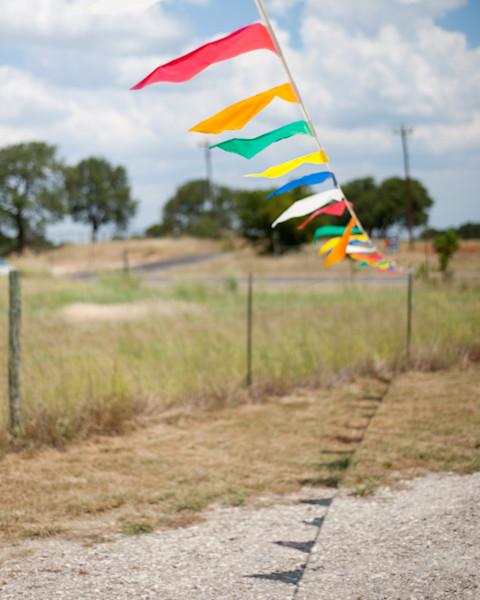 Texas Flags 2