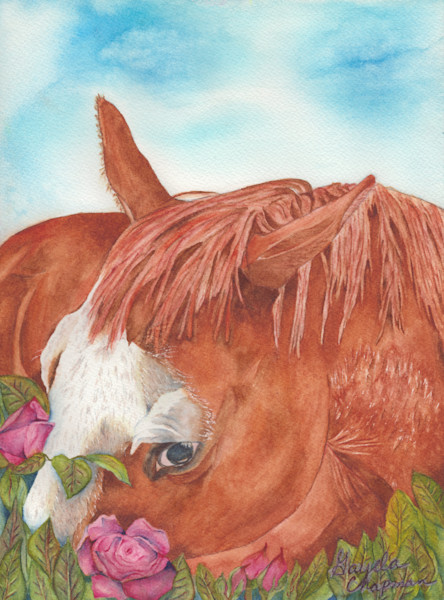 """Caught Me"" horse art by  Gayela's Premiere Watercolors