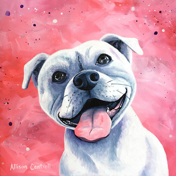 Love pitbull portrait - original painting by Allison Cantrell